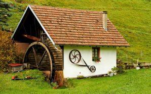 Polacy chcą mieszkać w zieleni